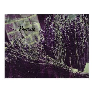 cartão da lavanda de provence cartoes postais