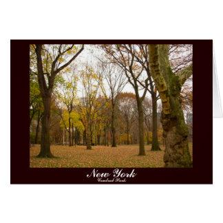 Cartão da lembrança de New York do Central Park do
