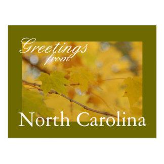 Cartão da queda de North Carolina