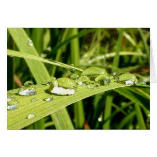Cartão das gotas de água