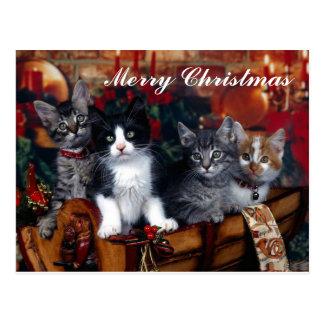 Cartão de 4 Felizes Natais dos gatos Cartão Postal