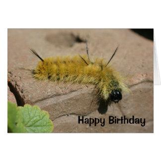 Cartão de aniversário da natureza de Caterpillar