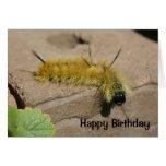Cartão de aniversário da natureza de Caterpillar d