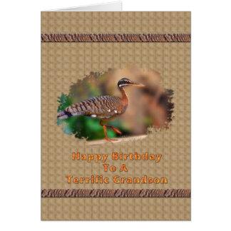 Cartão de aniversário do neto com o pássaro da