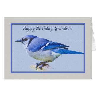 Cartão de aniversário do neto com o pássaro de Jay