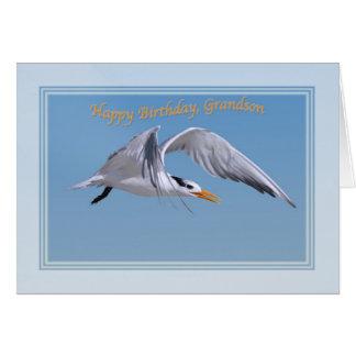 Cartão de aniversário do neto com o pássaro real d