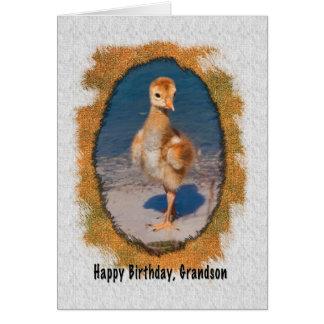 Cartão de aniversário do neto com o pintinho do gu