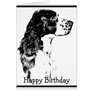 Cartão de aniversário do Spaniel de Springer