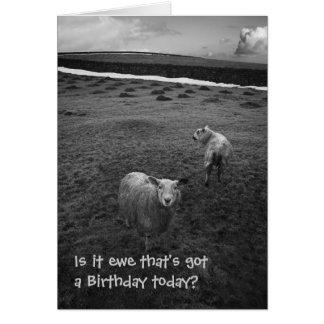 Cartão de aniversário inquisidor dos carneiros