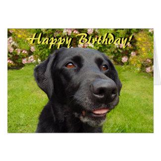 Cartão de aniversário preto de Labrador