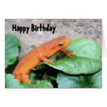 Cartão de aniversário vermelho da natureza da sala