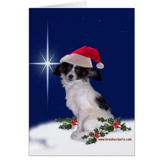 Cartão de cartões de natal com Papillon festivo