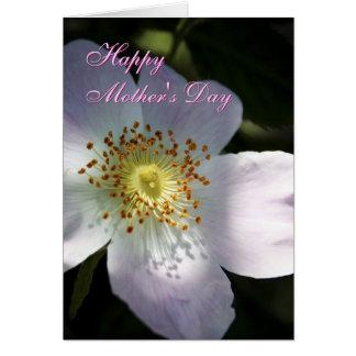 Cartão de cumprimentos de Rosa Canina do dia das m
