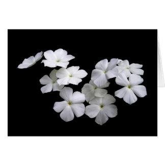 Cartão de flutuação da flor da harmonia da paz do
