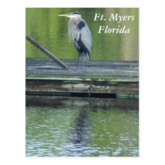Cartão de Fort Myers