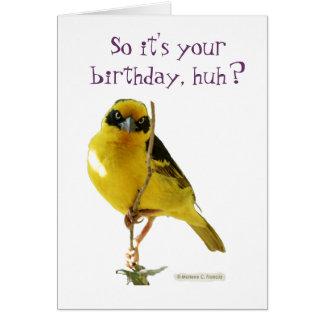 Cartão de LolBirds do feliz aniversario (para ela)