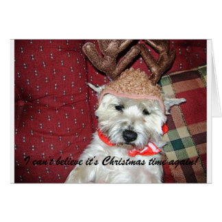 Cartão de Natal de Terrier de monte de pedras