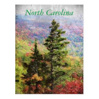 Cartão de North Carolina