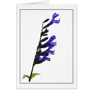 Cartão de nota botânico azul de Salvia
