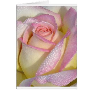 Cartão de nota cor-de-rosa de Dewey