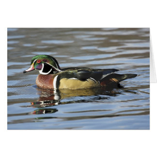 Cartão de nota da fotografia do pato de madeira
