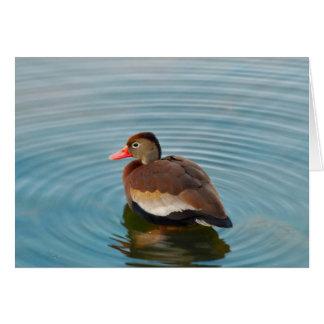 Cartão de nota do pato (vazio)