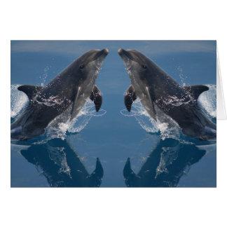 Cartão de nota dobro dos golfinhos