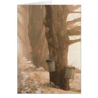Cartão de nota dos baldes da seiva