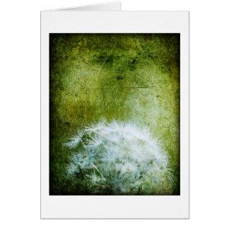 Cartão de nota floral, dente-de-leão no verde