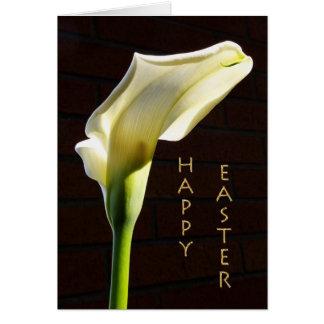 cartão de páscoa sunlit do lírio de calla