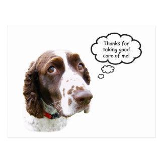 Cartão de Petsitter do Spaniel de Springer inglês