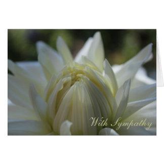 Cartão de simpatia branco da dália