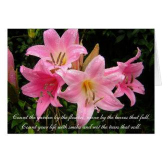 Cartão de simpatia - lírios cor-de-rosa