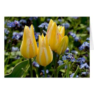 Cartão de tulipas amarelas