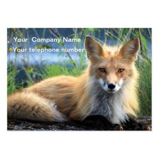 Cartão de visita bonito do costume da foto da rapo