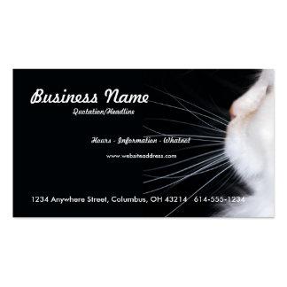 Cartão de visita branco do gato