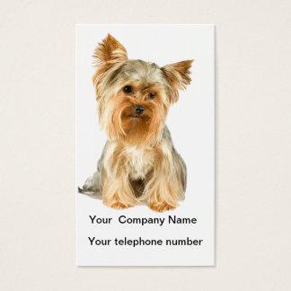 Cartão de visita da foto do cão do yorkshire