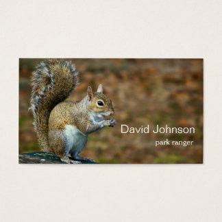 Cartão de visita da foto do esquilo