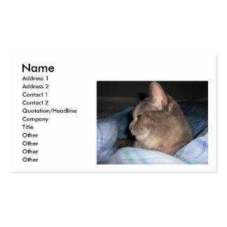 Cartão de visita da foto do gato