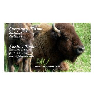 Cartão de visita da imagem do búfalo