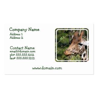Cartão de visita das imagens do girafa
