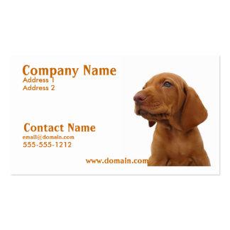 Cartão de visita do cão