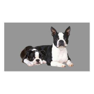Cartão de visita do criador de Boston Terrier