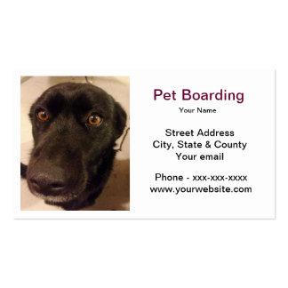 Cartão de visita do embarque do animal de estimaçã