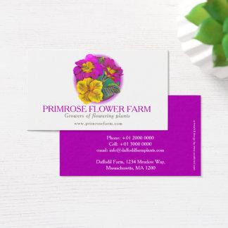 Cartão de visita dos fornecedores da planta da