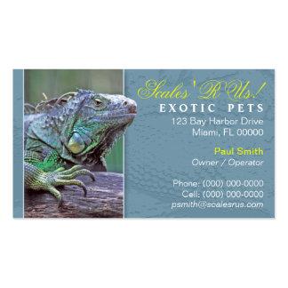 Cartão de visita exótico dos animais de estimação
