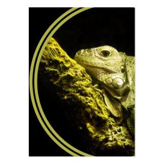Cartão de visita nobre da iguana