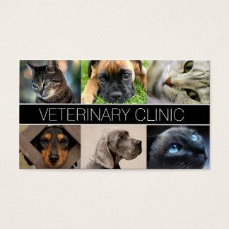 Cartão de visita veterinário dos cuidados dos