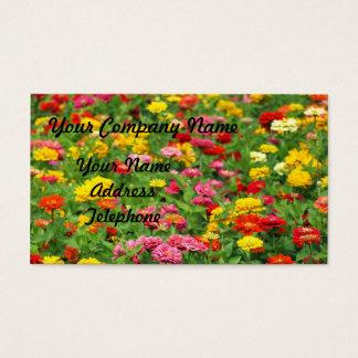 Cartão De Visitas Cama de flor colorida do cravo-de-defunto