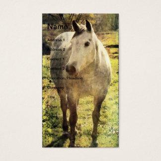 Cartão De Visitas Cavalo cinzento